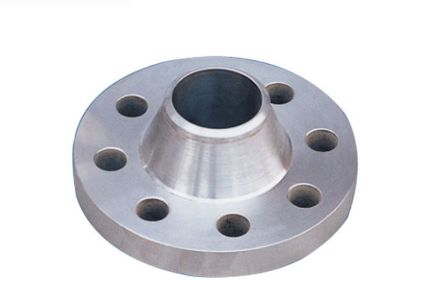 SS 316 Weld Neck (WN) Flanges